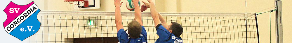 Header - Volleyball 2